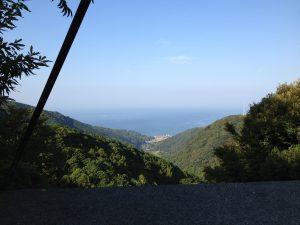 ある別荘の屋根からの眺め